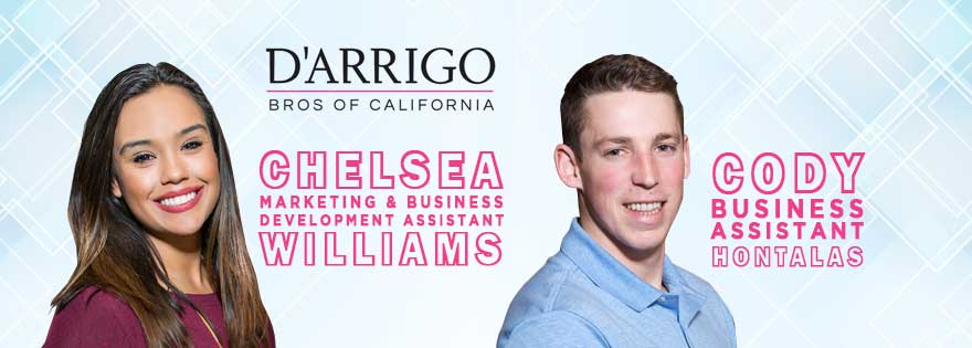 D'Arrigo Bros. Expands Business Development; Announces Two New Hires And New Solar-Powered Project
