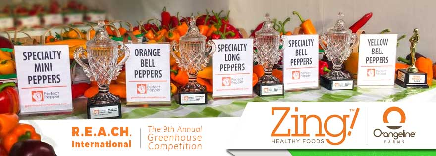 Orangeline Farms Wins 7 Awards at the 9th Annual R.E.A.CH. International Greenhouse Competition