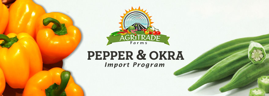 Agritrade Farms Rounding into End of Year with Bustling Pepper and Okra Import Program