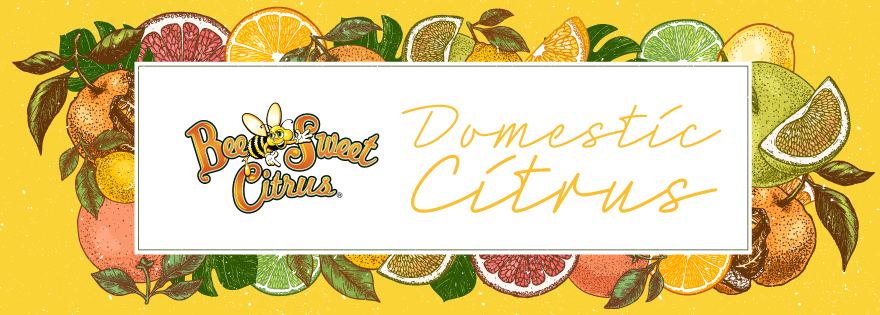 Bee Sweet Citrus Looks Forward to California Domestic Citrus Season