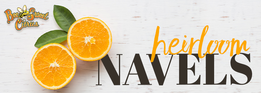 Bee Sweet Announces Return of Citrus Favorite, Heirloom Navel Oranges