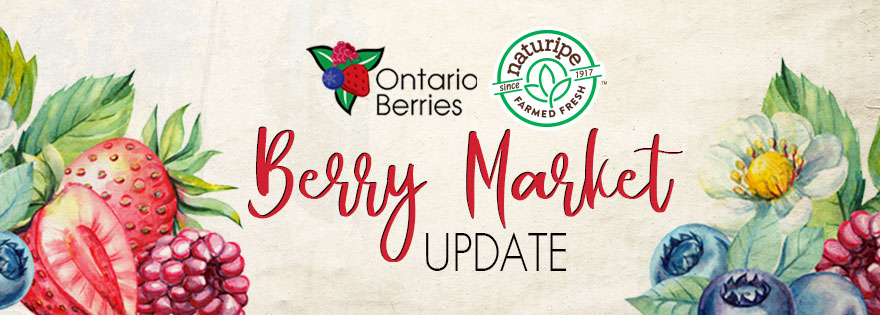 Berry Market Heats Up; Naturipe's Brian Vertrees and Ontario Berries' Kevin Schooley Comment