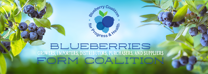 Broad American and International Coalition Formed to Oppose Limitations on Domestic Blueberry Imports