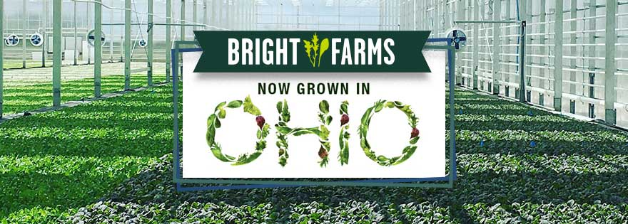 BrightFarms To Sell Locally Grown Packaged Salads In Ohio Valley Walmart Stores