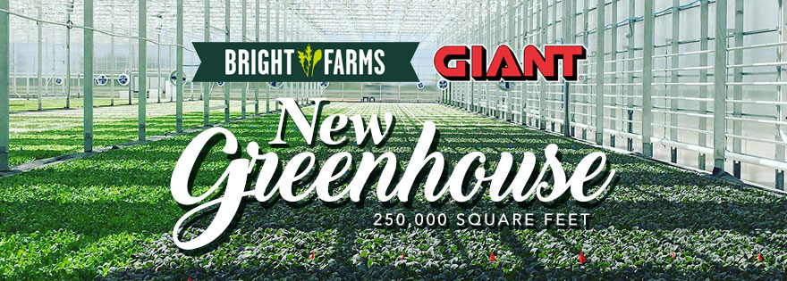 BrightFarms Breaks Ground on New Greenhouse Facility