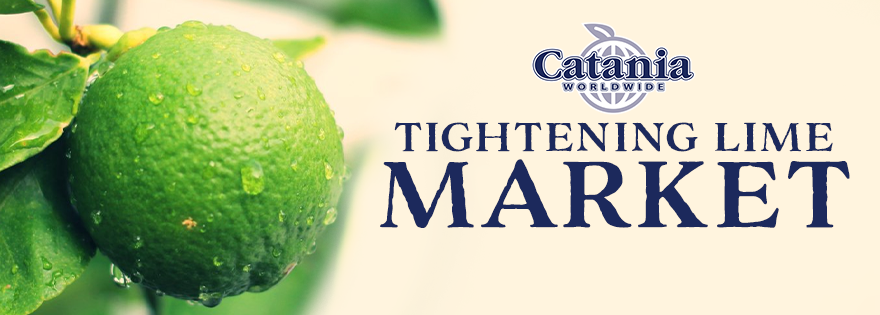 Catania Worldwide's Paul and Matt Catania Discuss Tightening Lime Market, Quality, and More