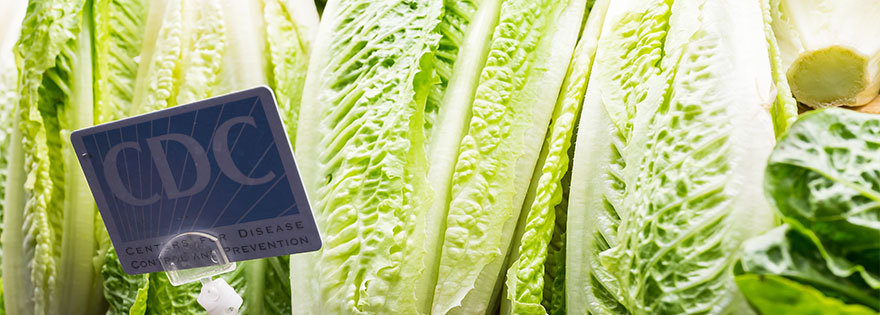 CDC Late on Romaine Reveal, Sources Weigh In