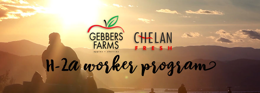Chelan Fresh Sales Partner Gebbers Farms Uses H-2A Visa Program to Grow and Give Back