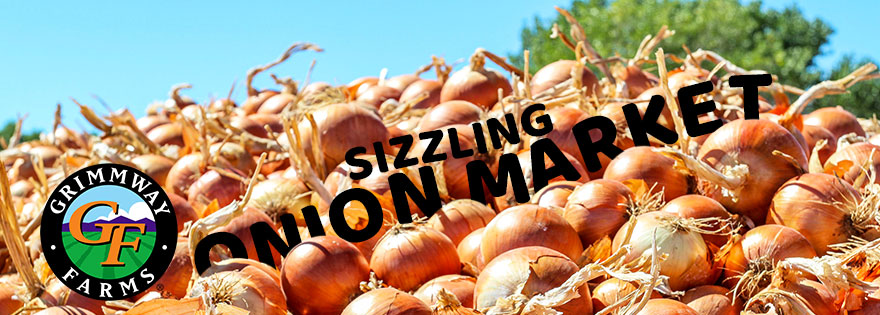 Grimmway Farms' Bob Borda Discusses the Active Onion Market