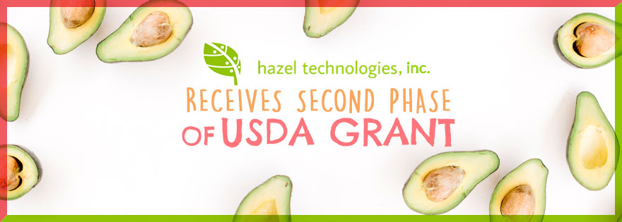 Hazel Technologies' New Grant Aims to Address Better Produce Preservation