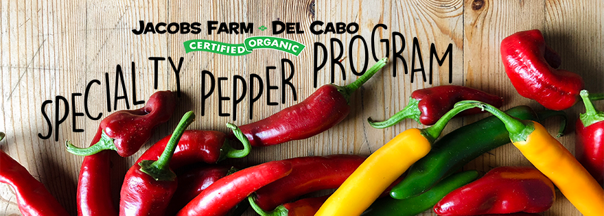 Kyla Oberman Discusses Jacobs Farm del Cabo's Specialty Pepper Program and Offerings