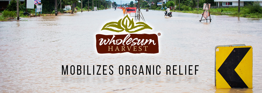 Wholesum Harvest's Jessie Gunn Mobilizes the Organic Growing Community for Hurricane Harvey Relief