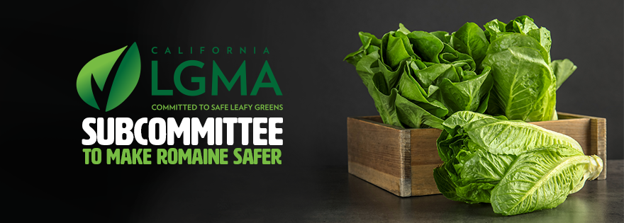 Leafy Greens Marketing Agreement Forms Adjacent Lands Subcommittee to Make Romaine Safer