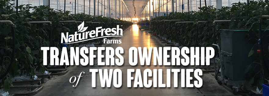 NatureFresh™ Farms Transitions Phase One Greenhouse