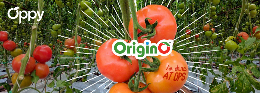 Origin Organic Farms To Be Featured at Oppy's Booth at Organic Produce Summit