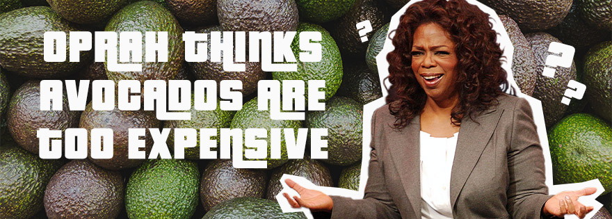 Oprah Purchases Avocado Orchard, Doesn't Travel Without The Fruit