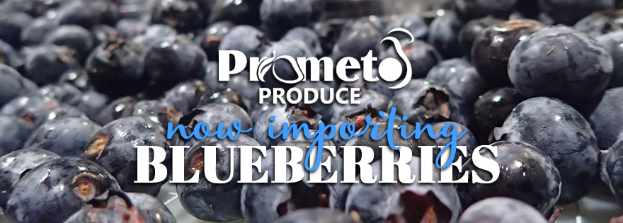 Prometo Produce's Edward Guerra Discusses Growth, New Programs, and PMA Plans