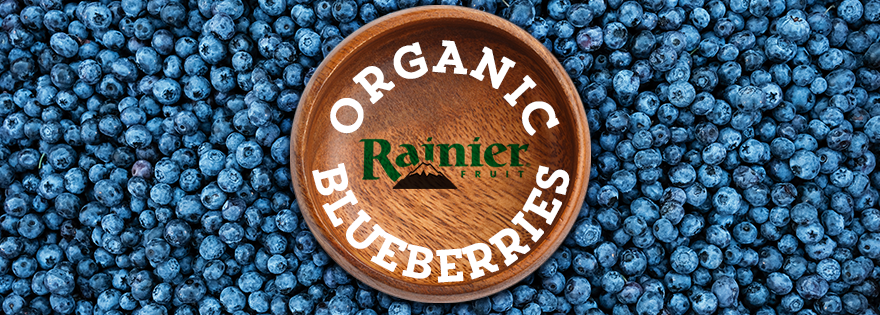 Rainer Fruit Company Kicks Off Organic Blueberry Harvest, Invests in Improved Genetics