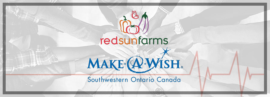 Red Sun Farms Employees Promote Health Initiative by Making a Donation in Support of Make-A-Wish® Southwestern Ontario