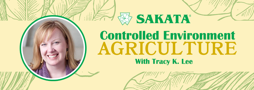 Sakata Seed Discusses Controlled Environment Agriculture