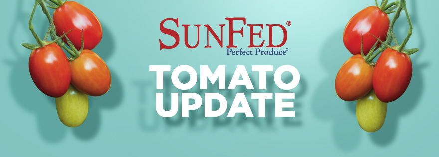 SunFed's Eduardo Herbst Discusses Tomato Crop and Market Update