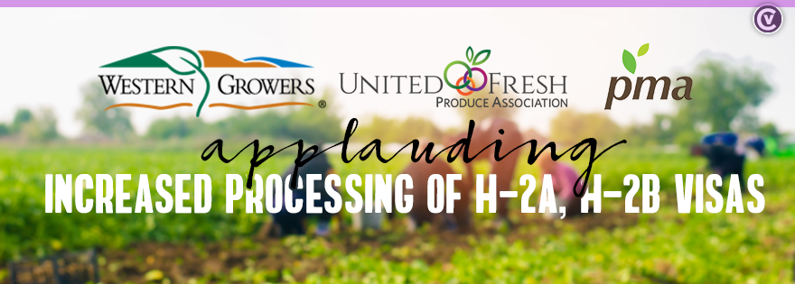 United Fresh Produce Association, Western Growers Association, and Produce Marketing Association Applaud Decision for Increased Processing of H-2A Visa Holders and H-2B Employees