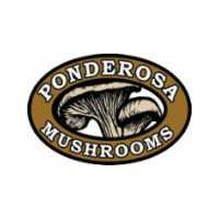 Ponderosa Mushrooms