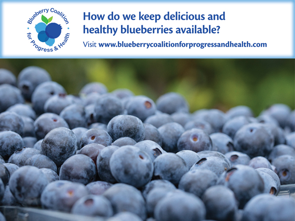 Titled The Blueberry Coalition for Progress and Health, this organization has come together to oppose limitation on blueberry imports, which includes the upcoming International Trade Commission hearing on blueberry imports