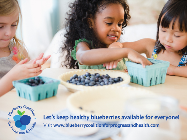 All members of the Blueberry Coalition for Progress and Health agree that imports are not a substantial cause of serious injury to the domestic blueberry industry
