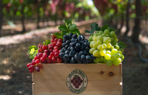 Through a partnership made by California Table Grape Commission, California grapes will be making an appearance on menus across the U.S.