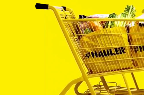 "Described as a ""hard discount"" grocery store, No Frills presents a limited line of offerings, but with substantial everyday low prices and a community-based franchise"