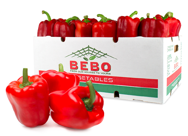 Bebo Fresh's businesses span several sectors of the food industry and beyond