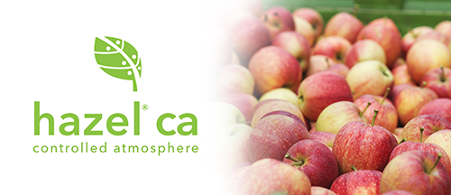 Hazel Technologies recently launched its Hazel® CA, a new technology designed for growers and packers of apples to protect quality in cold storage following harvest