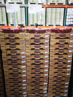 California Giant Berry Farms has partnered with Costco to bring high- and consistent-quality California strawberries to the Chinese market