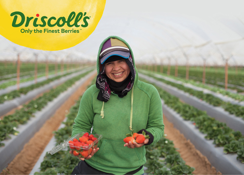 Driscoll's has announced it's expanded its Fair Trade program by nearly 14%