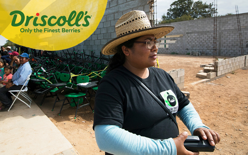 The expansion builds on the continued success of Driscoll's multi-year Fair Trade USA partnership, which has contributed nearly one million dollars in Community Development Funds through the sale of Fair Trade Certified™ organic berries grown in Baja California