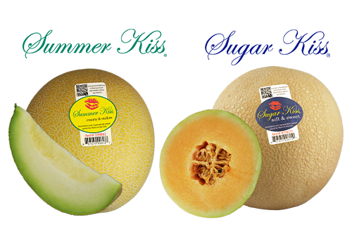 Dulcinea Farms has procured an exclusive agreement to market and distribute the ever-popular Kiss Melons