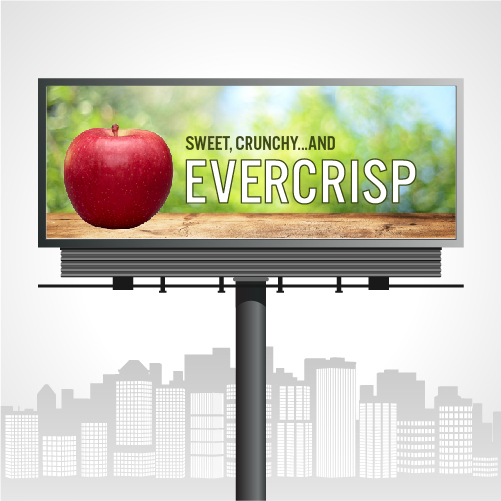 Riveridge Produce Marketing is out to educate consumers about Evercrisp® apples though billboards, radio, and influencers