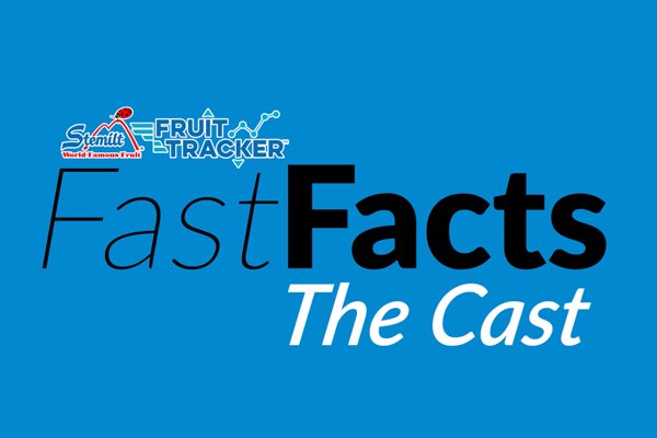 Stemilt's video podcast series Fast Facts: The Cast, episode 1, examines the U.S. apple category's performance in October of 2019