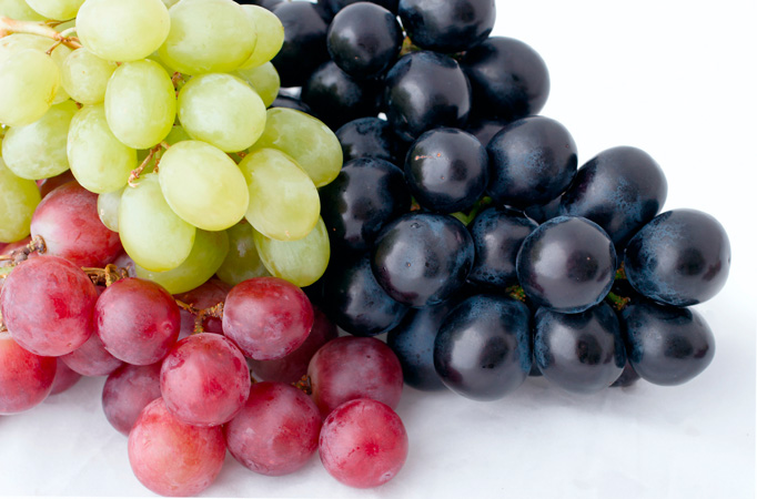 Anthony Vineyards produces conventional grapes, but has numerous other varieties