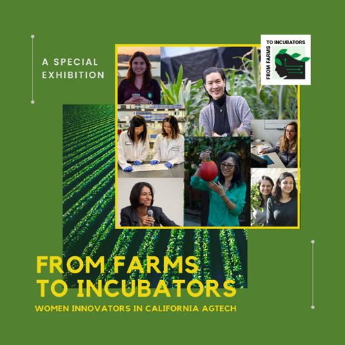President and CEO of Frieda's Specialty Produce Karen Caplan will open the From Farms to Incubators: Women Innovators in California AgTech virtual exhibition