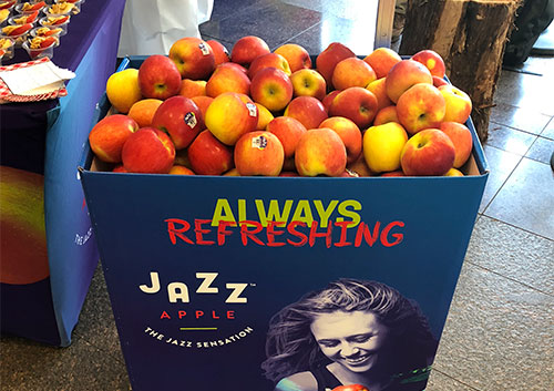 Jazz™ is another apple grown by T&G Growers and marketed by Oppy that consumers reach for again and again