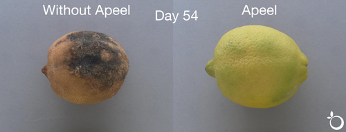 Apeel's citrus product improves shelf life, reduces shrinkage, and water loss by up to 70 percent