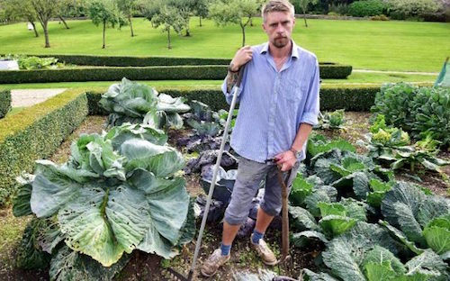 Dale Toten, Head Gardener at the Ston Easton Park, in his giant vegetable patch (Photo Credit: Dan Regan/Mercury Press)