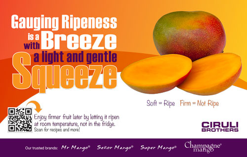 Gauging Ripeness is a Breeze with a light and gentle Squeeze
