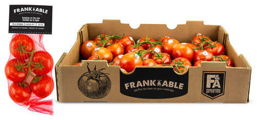 Frank & Able Tomatoes on the Vine
