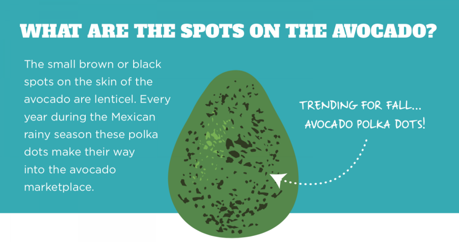 Periodic newsletters provide avocado insights