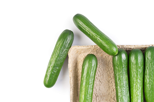 Conventional and Organic Mini Cucumbers will be displayed in the company's new compostable packaging at CPMA