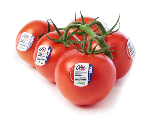 NatureFresh™ Farms' OhioRed™ Tomatoes