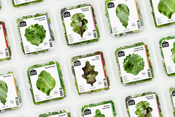 The CEA Food Safety Coalition has announced that it will be expanding its membership and efforts of the CEA leafy greens sector, bringing the member count to 21 stakeholders